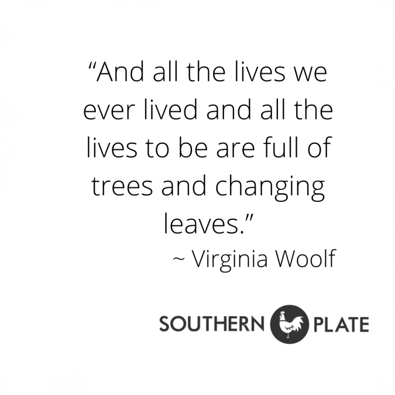 quotes southern plate